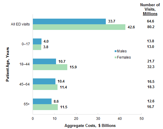 Figure 1 is a bar chart illustrating the aggregate ED visit costs and the number of ED visits by patient sex and age group in 2017.